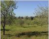 Quinta da Figueirinha