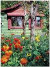 A Garden Cottage Retreat