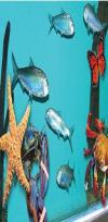 Stanley Bridge Marine Aquarium