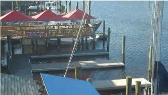 Southport webcam - Fishy Fishy Cafe webcam, North Carolina, Brunswick County