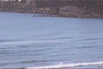 Palm Beach webcam - Palm Beach webcam, New South Wales , Sydney