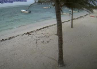 Akumal webcam - Akumal Beach webcam, Quintana Roo, Tulum
