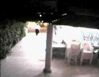Cozumel webcam - Tony Rome's Restaurant webcam, Quintana Roo, Quintana Roo