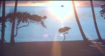 Cairns webcam - Palm Cove webcam, Queensland, County of Nares
