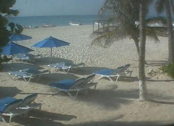Playa del Carmen webcam - Shangrila Caribe's diveshop webcam, Quintana Roo, Solidaridad