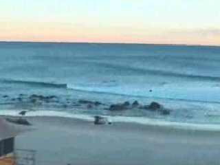 Gold Coast webcam - Snapper webcam, Queensland, Gold Coast