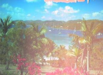 Tortola webcam - Robb White Bar webcam, Tortola, Tortola