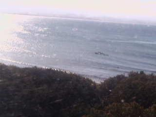 Byron Bay webcam - Byron Bay - The Pass webcam, New South Wales , Byron Shire