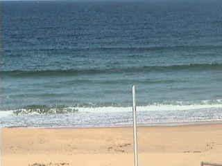 Wamberal webcam - Wamberal webcam, New South Wales , Central Coast