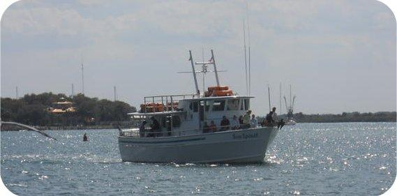 Sea spirit fishing charters in ponce inlet volusia county for Sea spirit fishing