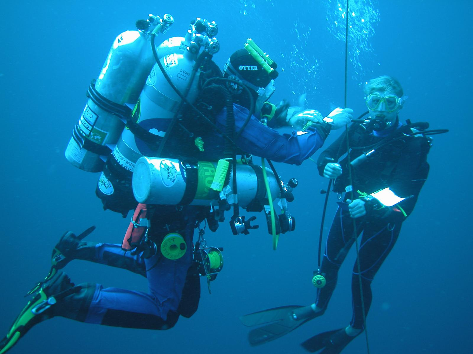 term paper on scuba diving Download thesis statement on scuba diving its dangers and rewards in our database or order an original thesis paper that will be written by one of our staff writers and delivered according to the deadline.