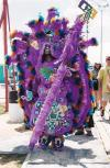 Mardi Gras New Orleans and the Mardi Gras Indians