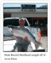 Erie Outfitters Bait and Tackle Shop